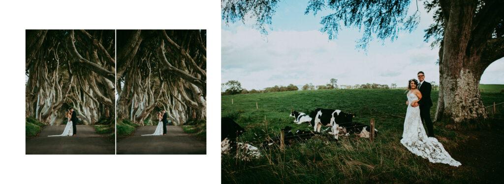 northern ireland wedding19